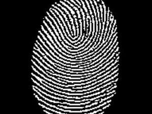 Vai jūs zinājāt ka tagad... Autors: SnYx Kad personības noteikšanai pirmoreiz izmantoja pirkstu nospiedumus?