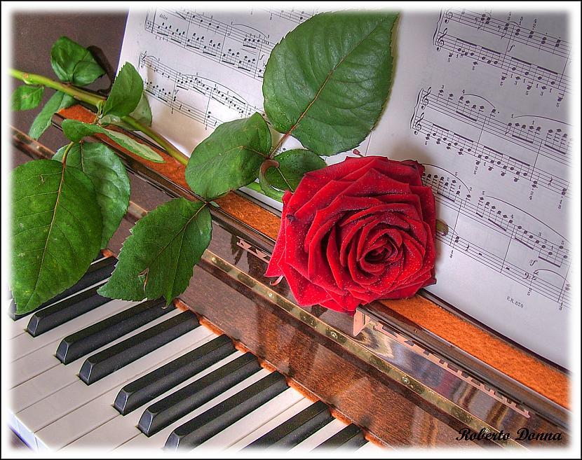 Спокойной, открытки с клавишами пианино с днем рождения